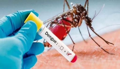 Dengue y dengue grave
